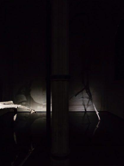 Stéphane Thidet, Solitaire, Installation, 2016