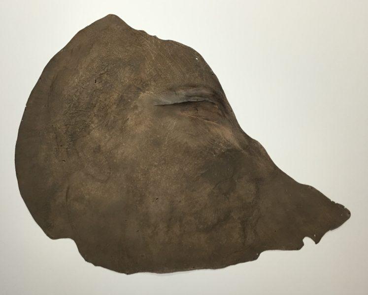 Profil, 2014, technique mixte sur oreille d'éléphant naturalisée, 155x124 cm © Isabelle Henricot