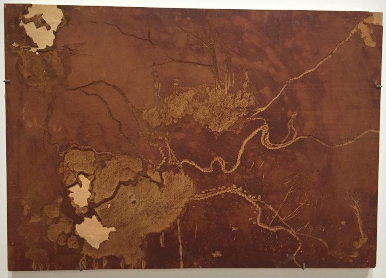 Xylophagies (2/15), 1994, bois rongé par les termites, 70x100 cm © Isabelle Henricot